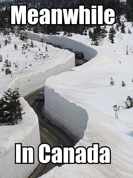 funny, lol, canada, crazy, meanwhile in canada, weird canadian, only in canada, memes canada, culture, stupid canada, facts canada, funny pictures, funny meme, nice canadian meme, canadian girls, ice hocky